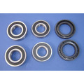 Apache RLX 100 front wheel bearing kit