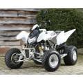 Apache RLX 400 Sport / 400 Utility 2x4 Service Kit Motorex