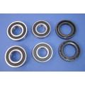 Apache RLX 100 front wheel bearing kit