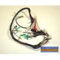 Apache RLX 100 Wiring Loom 2000 onwards